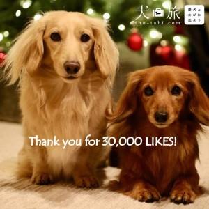 犬旅フェイスブック_30000いいね!